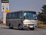 碧莲 2011款  4.5L-尊贵VIP_高清图3