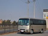 碧莲 2011款  4.5L-尊贵VIP_高清图4