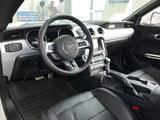 Mustang 2017款  2.3T 性能版_高清图2