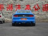 Mustang正后