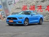 Mustang头图