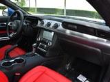 2018款 5.0L V8 GT-第3张图