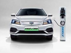 帝豪新能源 EV350 进取型个人版