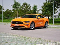 2019款 Mustang  2.3L EcoBoost 性能加强版
