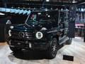 2020款 奔驰G级 G 500 暗夜特别版