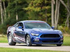 2016款 Mustang 2.3T 性能版