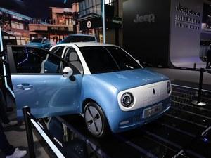 2018款 欧拉R1 基本型