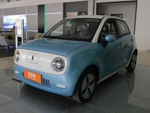 2019款 欧拉R1 301km 标准版